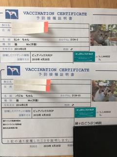 FDA5C3B9-1B44-49A5-A464-6B0DA18450E8.jpeg